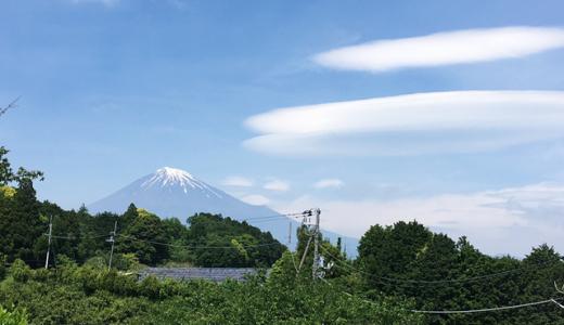 家族やカップルで訪れたい!富士山と夜景の見える岩本山公園
